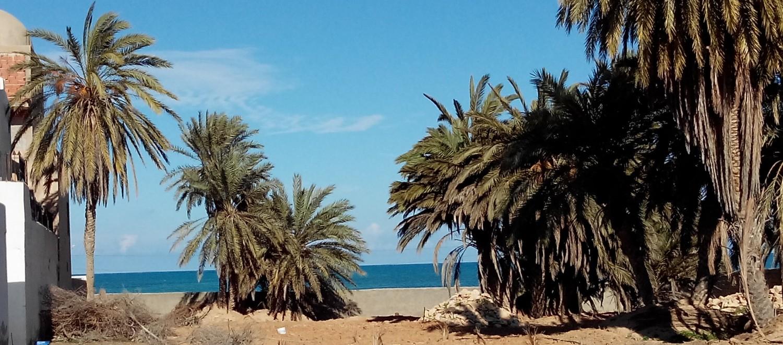 prochain sejour en tunisie